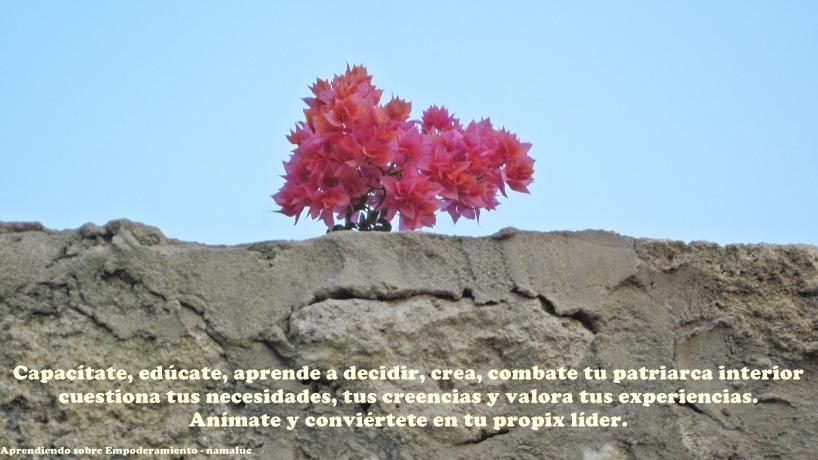 Autoliderazgo 2 namaluc blog