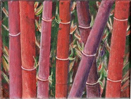 Bamboo ag 13